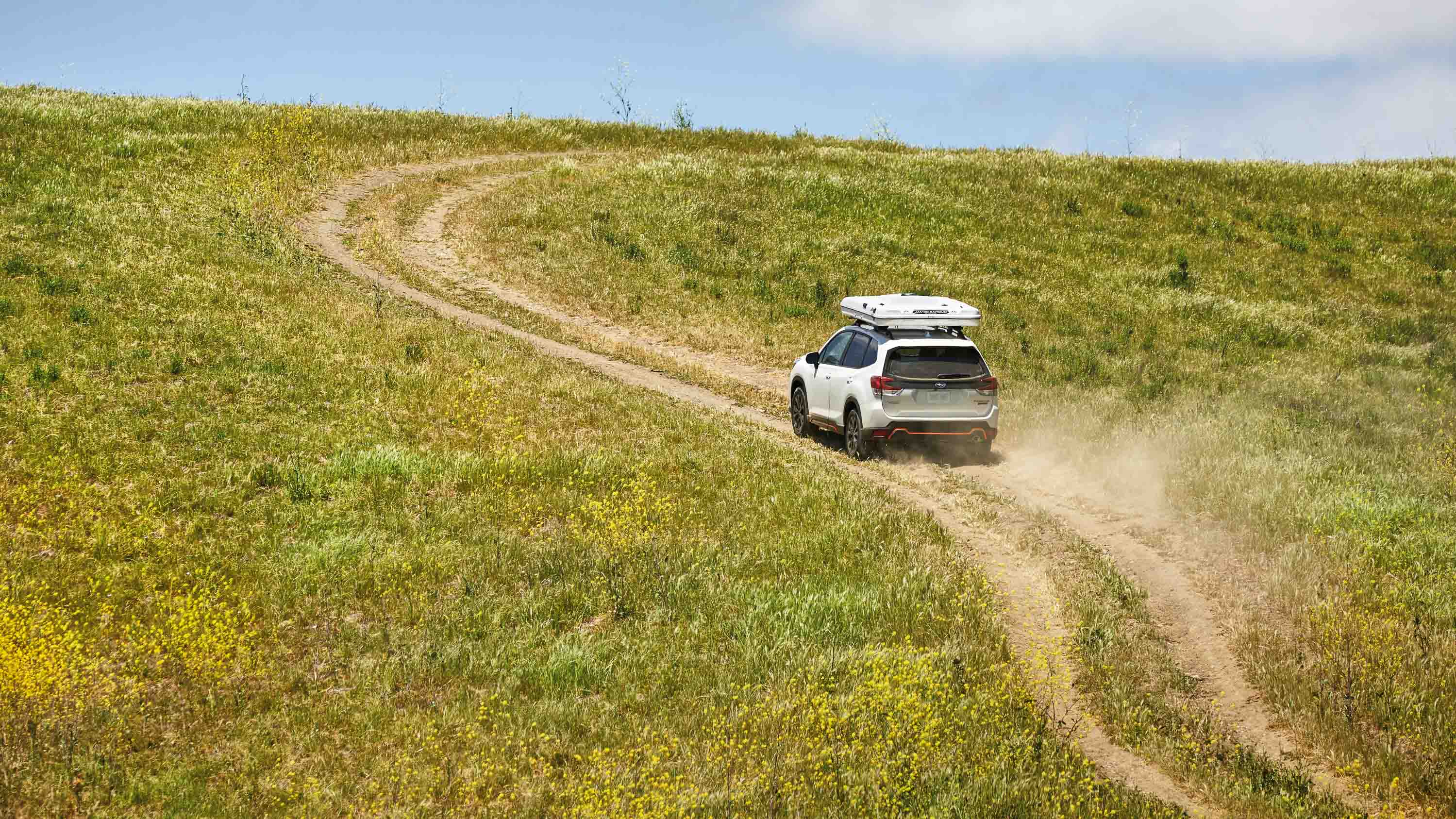 Jeff Stockwell - Subaru forester